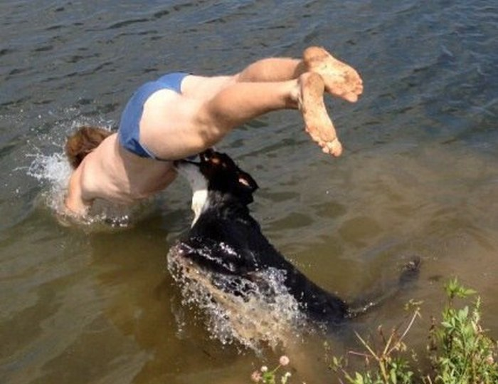 Diving Man Gets Wrecked By Dog (3 pics)