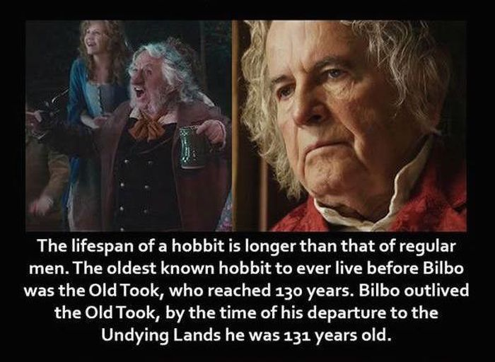 Lord Of The Rings Facts That Every Hardcore Fan Should Know (29 pics)