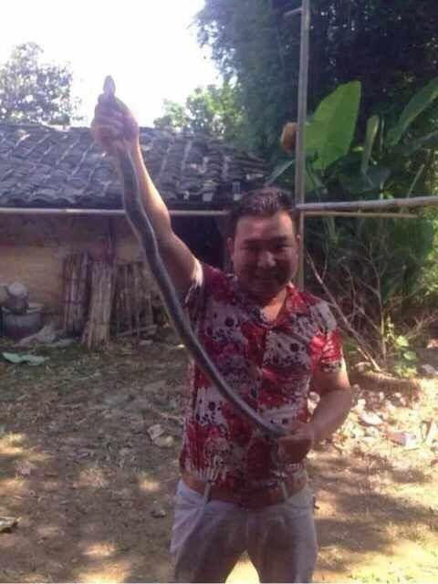 Chinese Man Trying To Get Friendly With A Poisonous Snake Goes Horribly Wrong (3 pics)