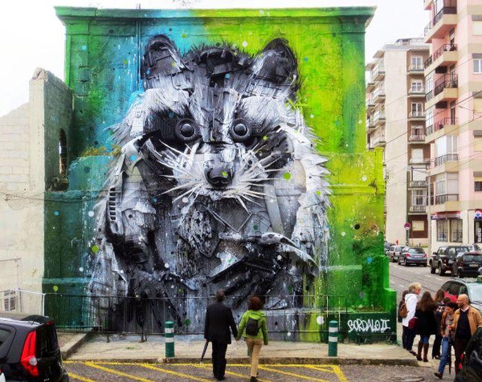 Big Raccoon Gets Turned Into 3D Street Art (3 pics)