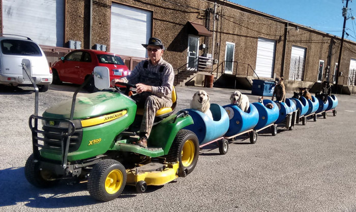 This 80 Year Old Man Built A Special Train So He Could Take Rescue Dogs For Rides (5 pics)
