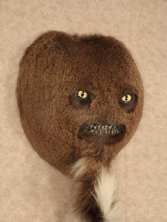 Taxidermy Gets Taken To A Whole New Level Of Creepy (4 pics)