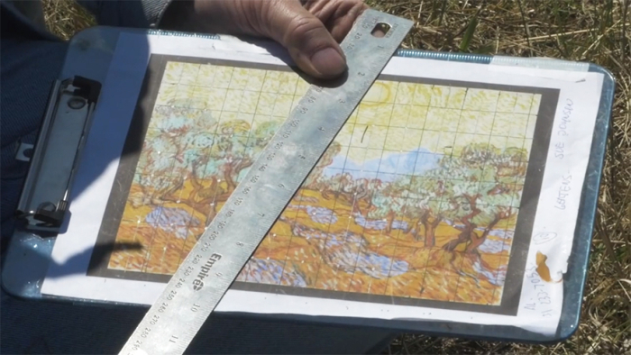 Artist Uses Field To Recreate Van Gogh's 1889 Painting 'Olive Trees' (5 pics + video)