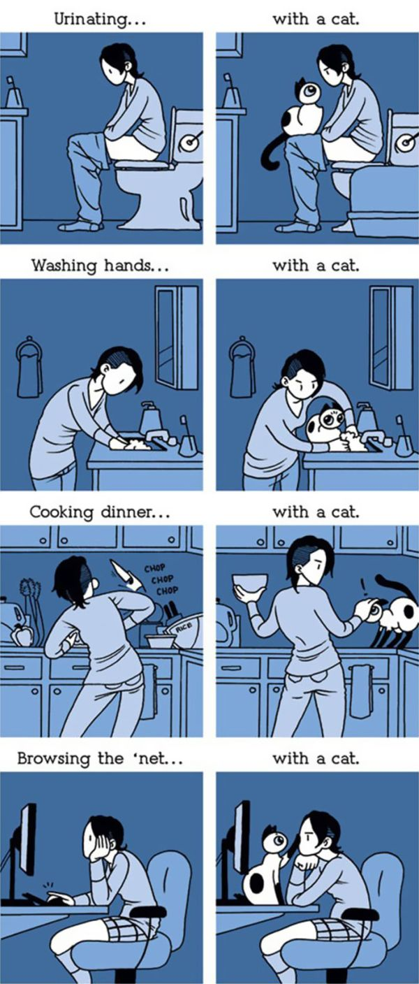 Funny Comics Perfectly Describe What It's Like To Own A Cat (20 pics)