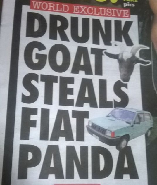 News Headlines That Will Make You Say WTF (15 pics)