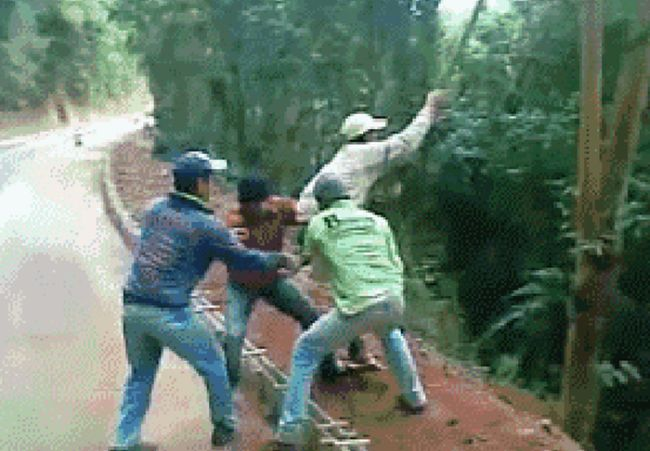 Stupid People That Are Prime Candidates For Darwin Awards (14 gifs)