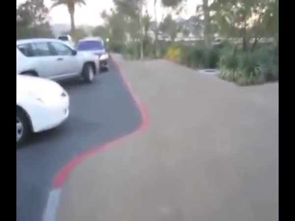 Floyd Mayweather Parking