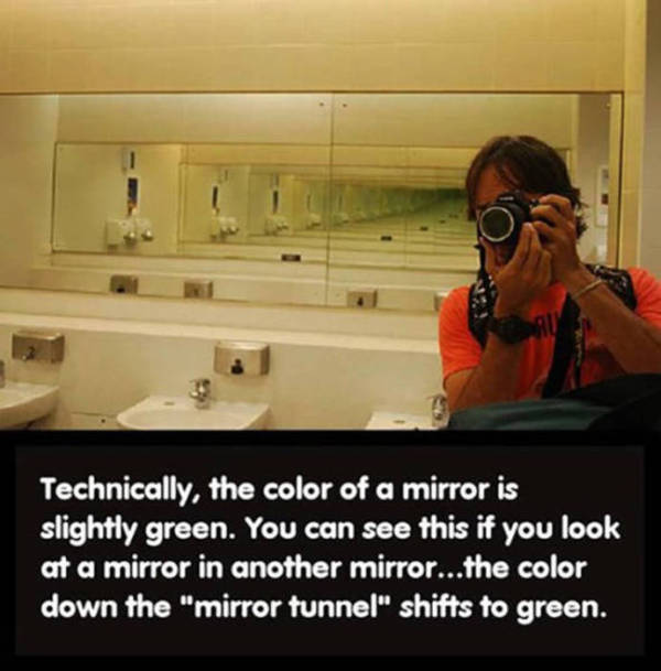 Fun And Fascinating Facts That Will Give Your Brain A Workout (31 pics)