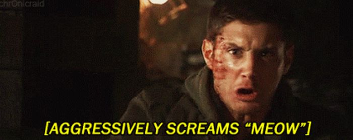 Subtitles From Movies And TV Shows That Will Make You Laugh Out Loud (16 pics)