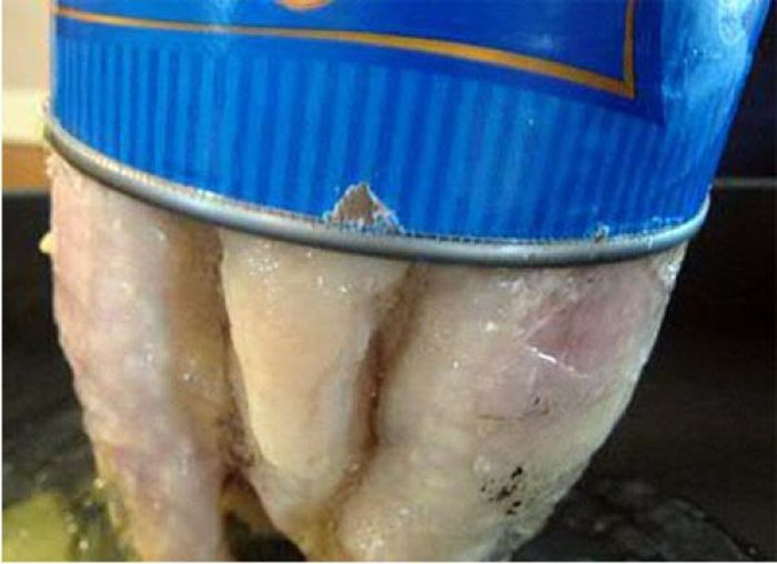 This Is What Canned Chicken Looks Like (4 pics)