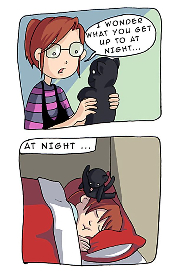 Comics That Tell You Everthing You Need To Know About Life With Cats (33 pics)