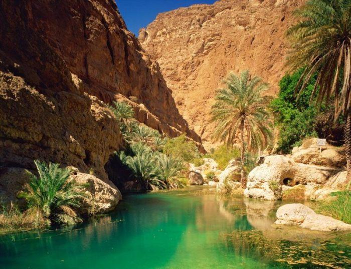 Salalah Transforms Into A Beautiful Oasis (9 pics)