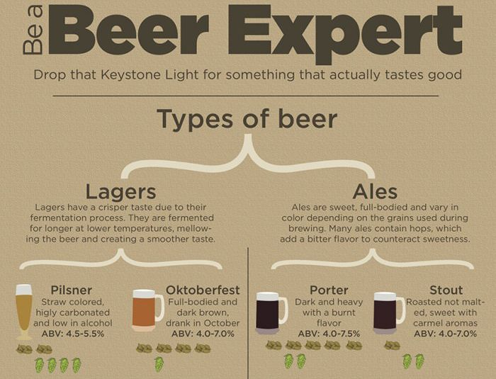 Everything You Need To Know About Becoming A Beer Expert