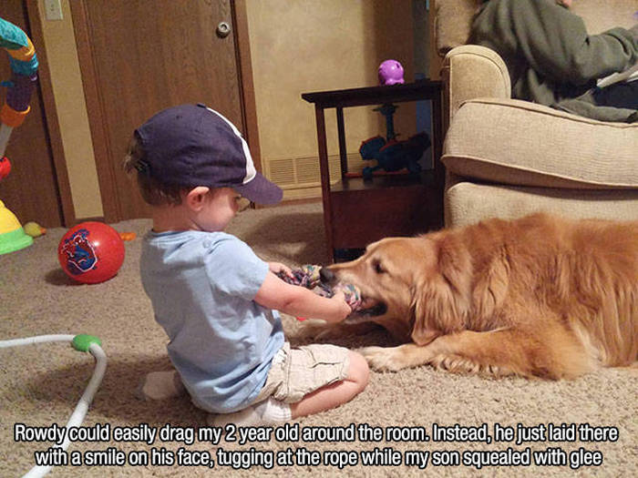 Proof That Dogs Are The Best Human Companions On The Planet (23 pics)