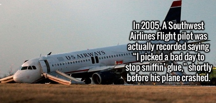 Take Your Knowledge Up A Notch With These Fun Facts (22 pics)