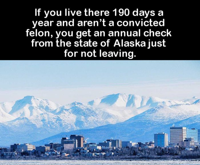 You'll Be The Smartest Person In The Room After Learning These Fun Facts (16 pics)