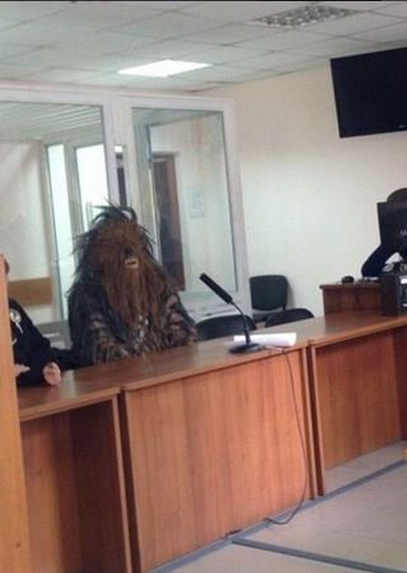 Chewbacca From Star Wars Gets Arrested For Campaigning On Election Day (5 pics)