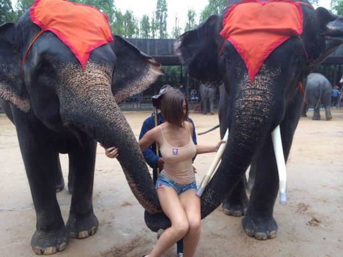 This Busty Babe Is Boycotting Bras For Good (8 pics)