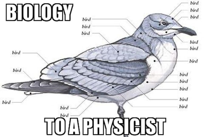 The Best Science Memes The Internet Has To Offer (40 pics)