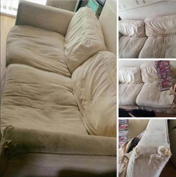 Craigslist Scam Has An Unexpected Twist (10 pics)