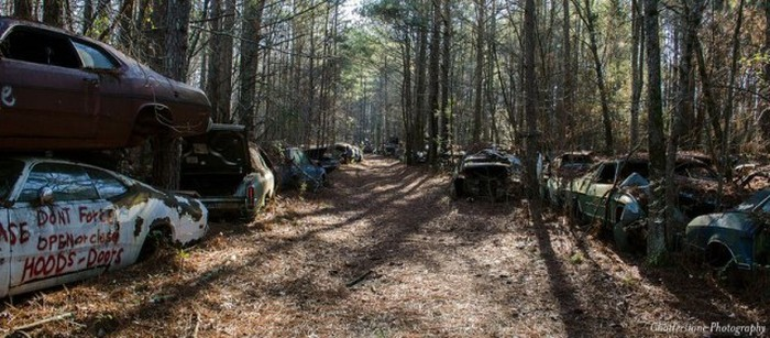 Welcome To Old Car City, The World's Largest Classic Car Junkyard (19 pics)