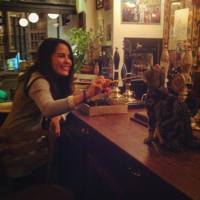 Now You Can Drink With Cats At This Cat Pub In The UK (8 pics)