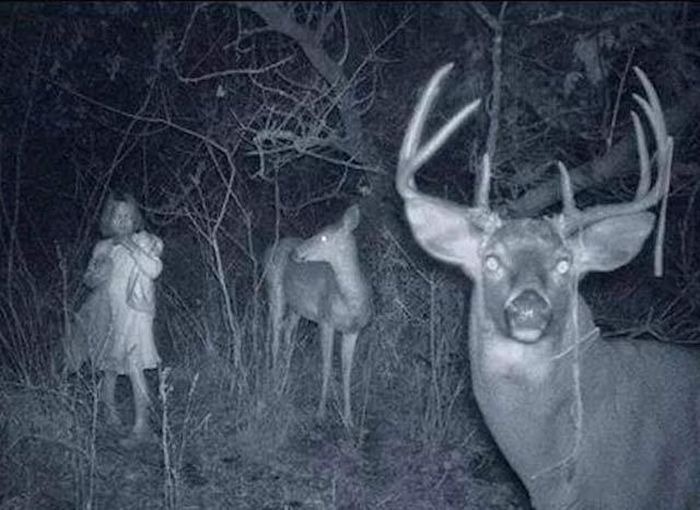 Scary Images That Will Terrify Even The Toughest People (33 pics)