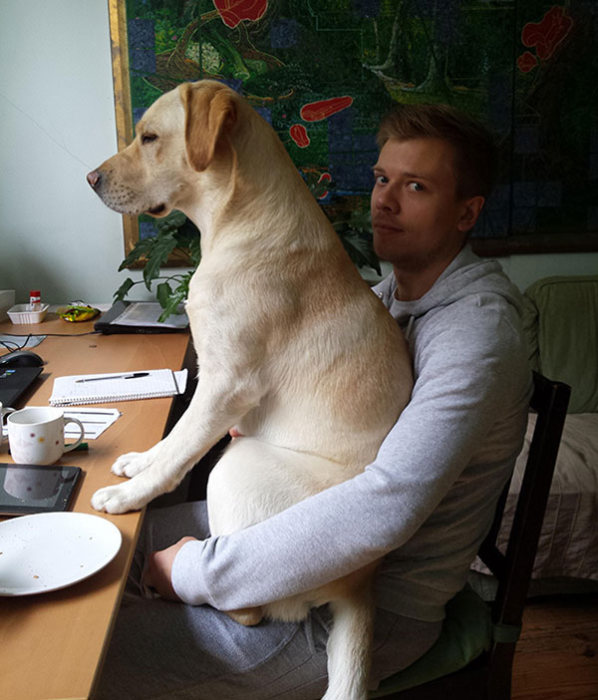 Dogs Are The Most Fun And Loyal Pets Ever (28 pics)
