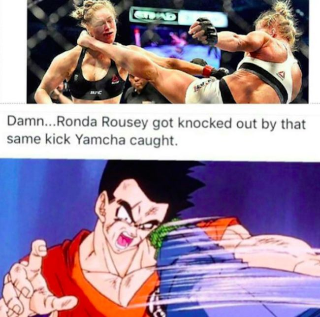 The Internet Is Photoshopping Ronda Rousey After Her Loss To Holly Holm (18 pics + video)