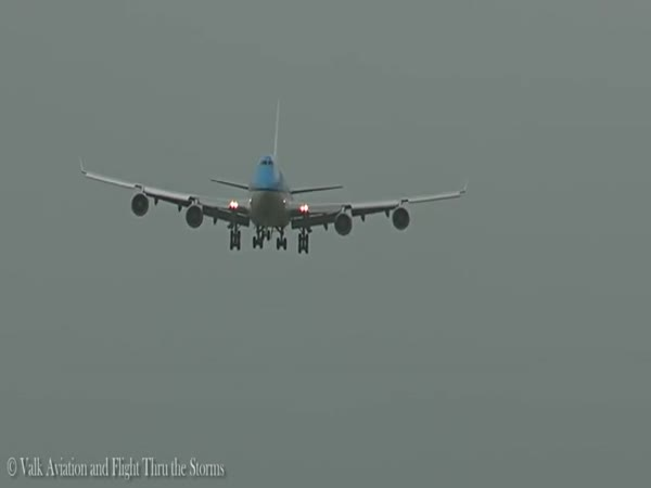 Bird Bounces Off Plane As Its Landing
