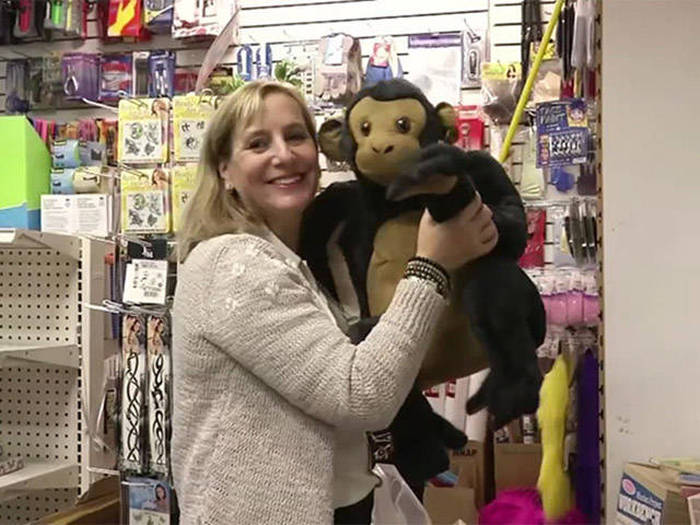 This Woman Bought A Toy Store So She Could Give All The Toys Away (5 pics)