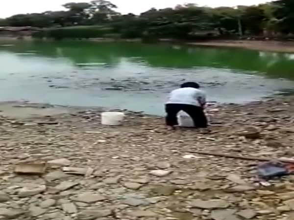 Hungry Fish In China Come Ashore To Eat