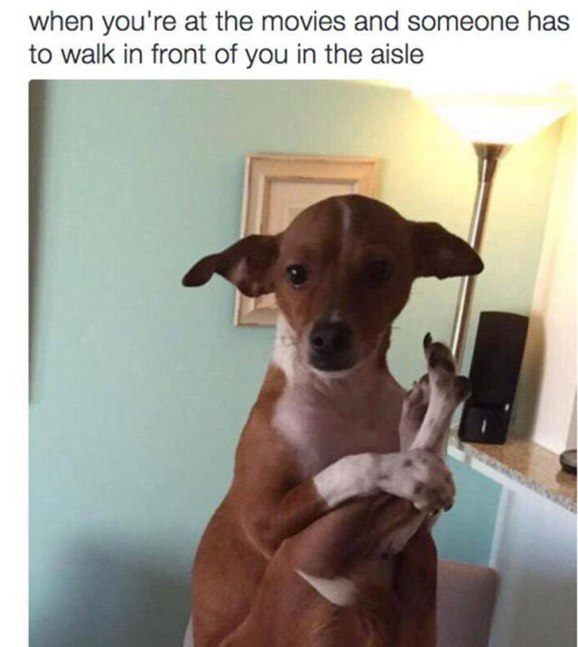 Memes That Will Deliver The Laughs You Need Right Now (35 pics)