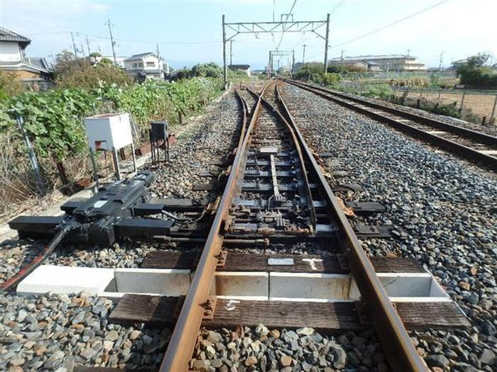 Japan Is Building A Tunnel So Turtles Can Cross The Railroad Tracks (3 pics)