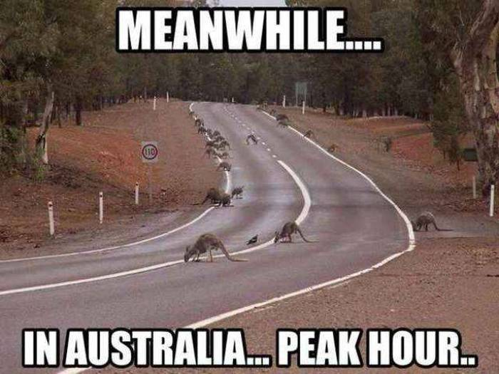 Australia Is Unlike Anywhere Else In The World (42 pics)