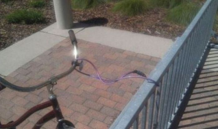 Proof That Stupidity Truly Knows No Limits (35 pics)