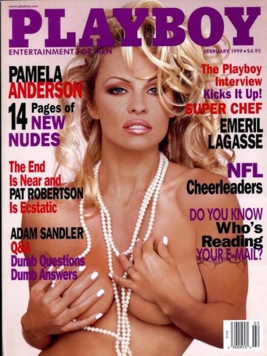 Celebrities Who Showed Off Their Sex Sides For The Cover Of Playboy (30 pics)