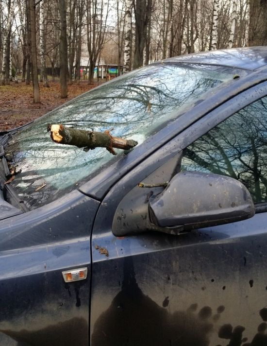 Strong Wind In Moscow Totals A Car Windshield (2 pics)