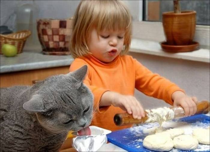 На кухне все ок - папа дома