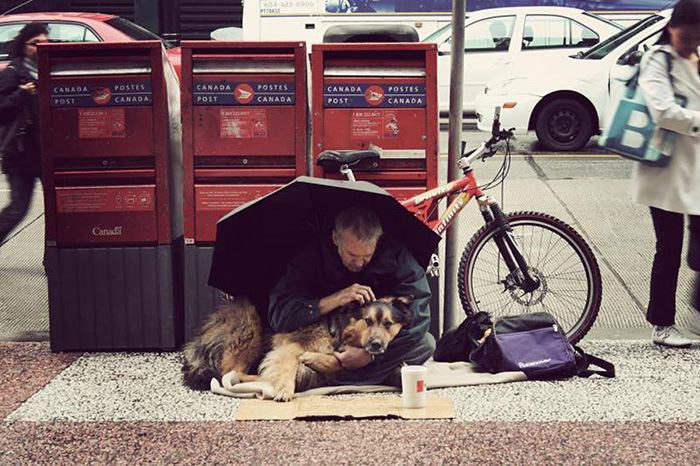 Photos That Prove The Only Thing Dogs Want From You Is Love (33 pics)
