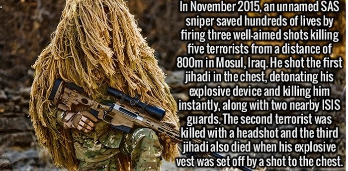 Interesting Facts That Will Excite Your Mind (24 pics)
