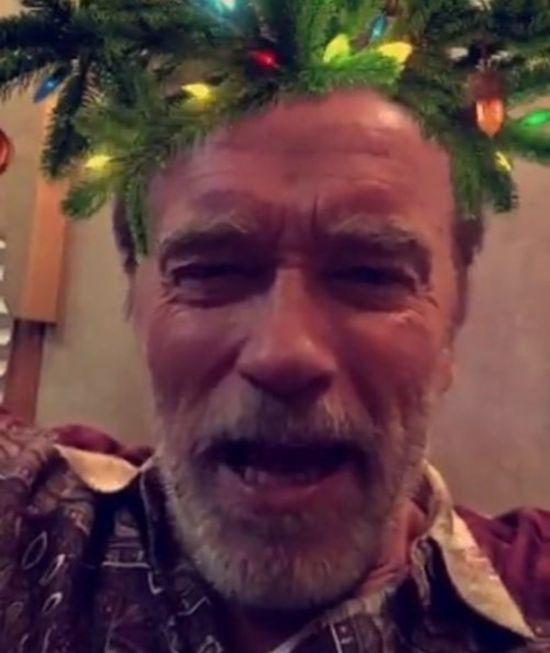 Arnold Schwarzenegger Wants You To Have A Merry Christmas (2 pics)