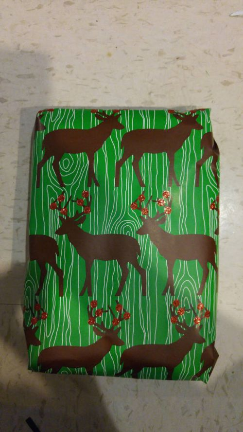 Guy Takes Holiday Gift Wrapping To The Extreme (14 pics)