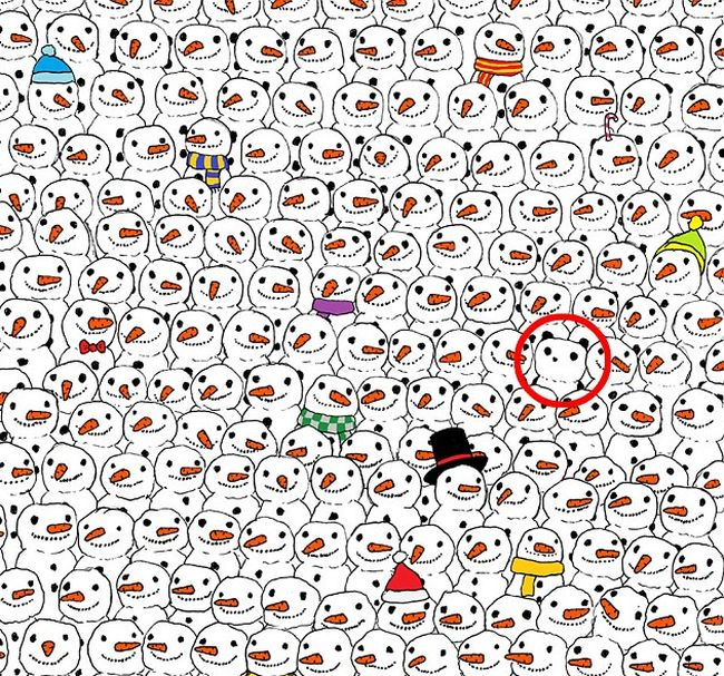 Good Luck Trying To Find The Panda In This Puzzle (3 pics)