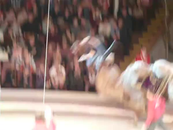 Funny Circus Fail