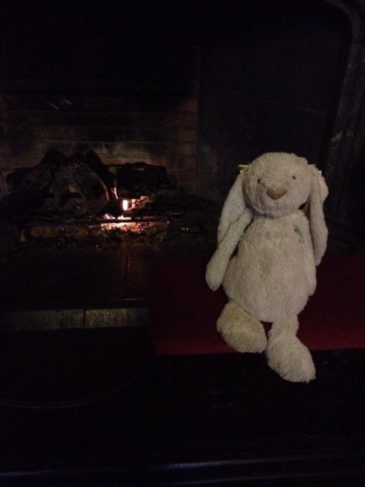 Little Girl's Stuffed Bunny Goes On An Adventure After Being Left Behind (11 pics)