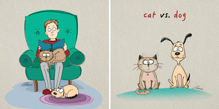 Here Are The 6 Biggest Differences Between Cats And Dogs (6 pics)
