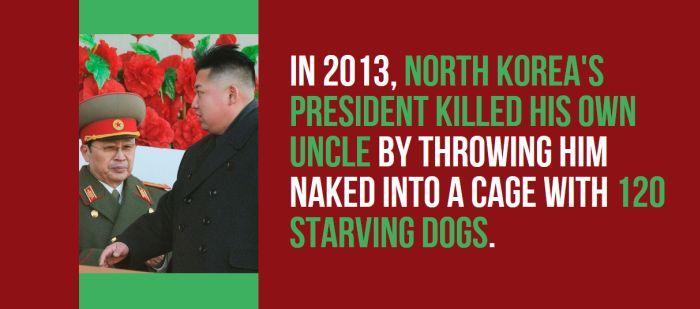 Strange But True Facts About North Korea (27 pics)