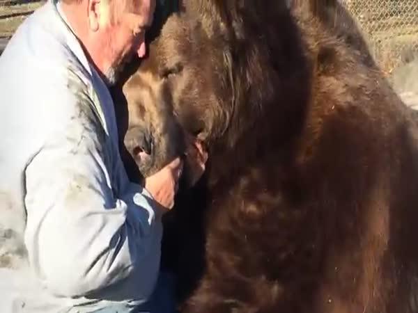 Bear Plays With A Man