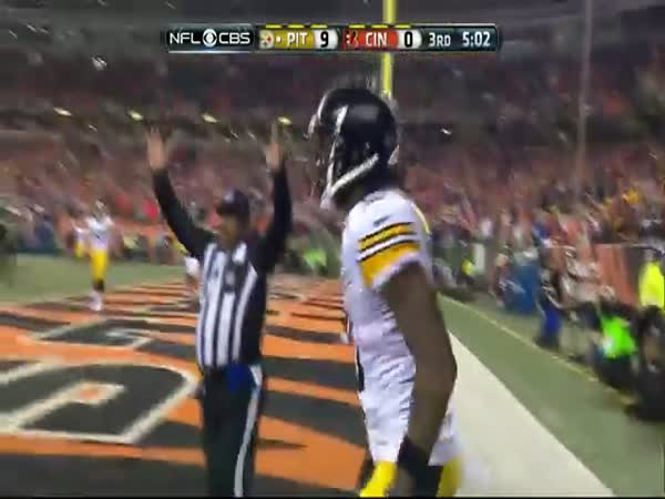 Martavis Bryant Is Out Of His Flipping Mind For This TD Steelers Vs Bengals NFL